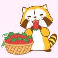 画像 LINEcamera 新スタンプ「Spring あらいぐまラスカル」登場!
