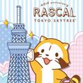 画像 「ラスカル」40周年と「東京ソラマチ<sup>®</sup>」5周年!! 期間限定「ラスカルショップ」をオープン!