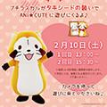 画像 あに★きゅーとでバレンタイングリーティング開催!