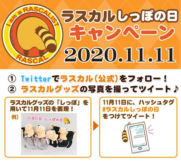 20102930_main01.jpg