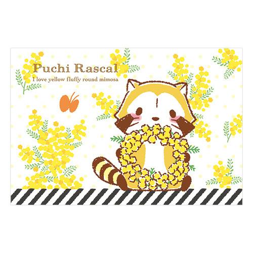【ミモザデザイン】ポストカード(2種) 商品画像